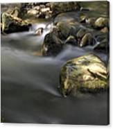 At The Banias River 2 Canvas Print