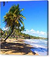 At The Beach Palmas Del Mar Canvas Print