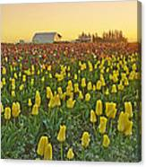 At The Crack Of Dawn Canvas Print