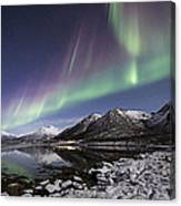 At The Fjord Canvas Print