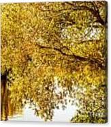 At The Lake -37 Canvas Print
