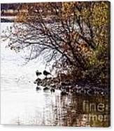 At The Lake-38 Canvas Print