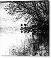 At The Lake-39 Canvas Print