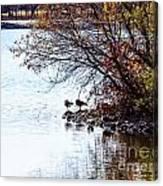 At The Lake-40 Canvas Print