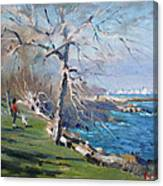 At The Park By Lake Ontario Canvas Print
