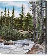 At The Top Of Alberta Falls Canvas Print