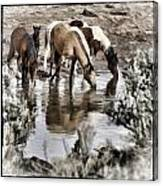 At The Watering Hole 1 Canvas Print