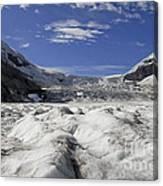 Athabasca Glacier Canvas Print