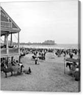 Atlantic City Beach, C1900 Canvas Print