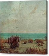 Atlantic City Seagull Canvas Print