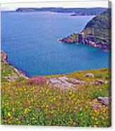 Atlantic Ocean From Signal Hill National Historic Site In Saint John's-nl Canvas Print