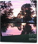 Atomic Reflection  Canvas Print