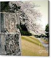 Atsugi Pillbox Walk  B Canvas Print