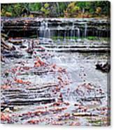 Au Train Falls Canvas Print
