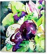 Aubergine Mirage Canvas Print