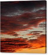 Audubon Sunset Light Canvas Print