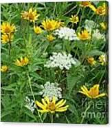 August Wildflowers Canvas Print