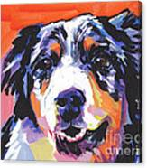 Aussie Luv Canvas Print