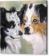 Aussies Canvas Print