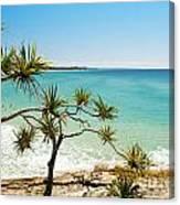 Australian Beach Canvas Print