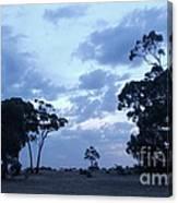Australian Countryside Canvas Print