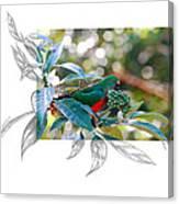 Australian King Parrot Canvas Print