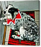 Australian Shepherd Christmas Dog Canvas Print