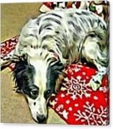 Australian Shepherd Happy Holidays Canvas Print