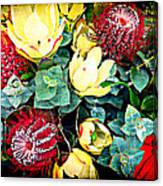 Australian Wild Flowers Canvas Print