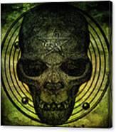 Authentic Skull Of The Vampire Callicantzaros Canvas Print