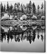 Autumn Reflection Black And White Canvas Print