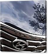 Auto Grill 14 Canvas Print