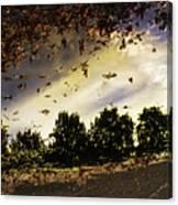 Autum Colors  Earth Water Air Canvas Print