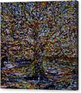 Autum In Central Park Canvas Print