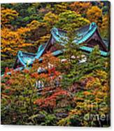 Autum In Japan Canvas Print