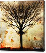 Autum Wind Canvas Print