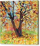 Autumn 1 Canvas Print