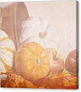 Autumn Abundance  Canvas Print