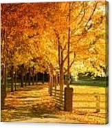 Autumn Alley Canvas Print