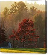 Autumn Ambers And Umbers Canvas Print