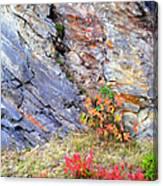 Autumn And Rocks Vertical Canvas Print