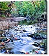 Autumn Arrives Canvas Print