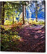 Autumn At Cary Lake Canvas Print