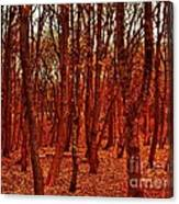 Autumn At Formby Woods  Canvas Print