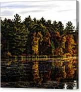Autumn At It's Finest 2 Canvas Print