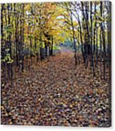 Autumn At Mono Cliffs Canvas Print