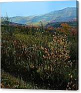 Autumn At Mt Rogers Canvas Print