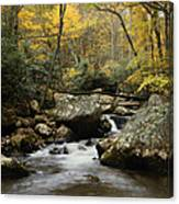Autumn At Stony Creek Canvas Print