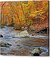 Autumn At The Black River Canvas Print