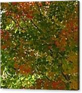Autumn  Banner Canvas Print